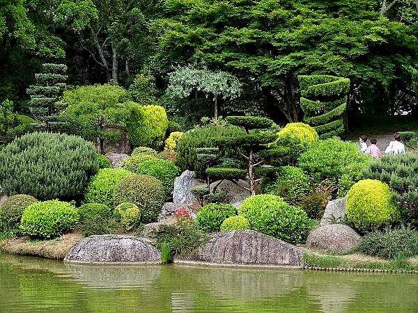 Красивые клумбы и грядки из садового